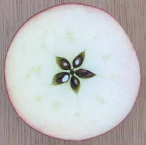 the star inside an apple